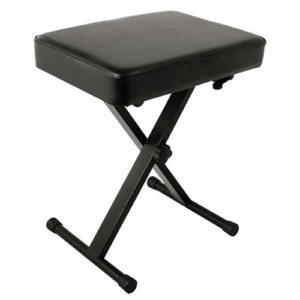 World Tour Deluxe Padded Bench