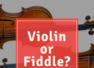 violin or fiddle