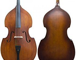cecilio double bass review