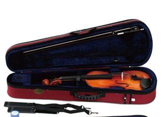 stentor 1500 beginner kids violin