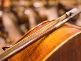 cello maintenance