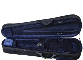 lightweight violin case