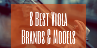 Best viola brands and models