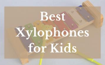 Best Xylophones For Kids