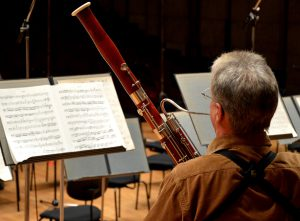 Bassoon - Hard Musical Instrument
