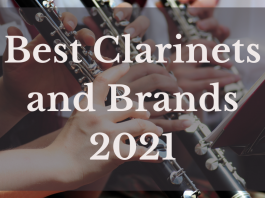 Best Clarinets And Brands 2021