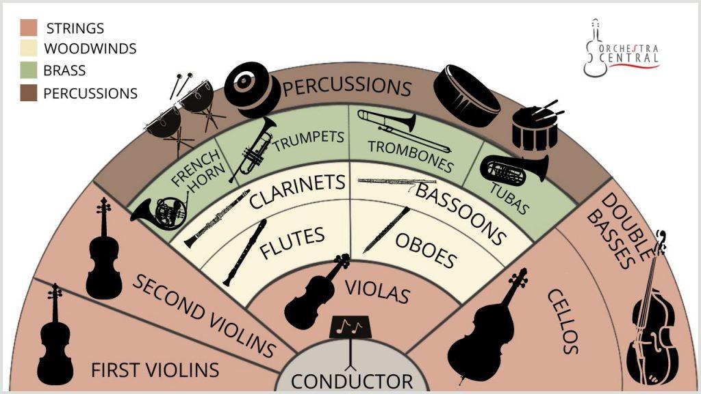 Violas vs. Violin: Orchestra Arrangement